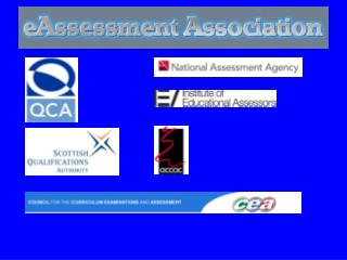 Proposal for Establishing a Professional Body for e-Assessment Practitioners