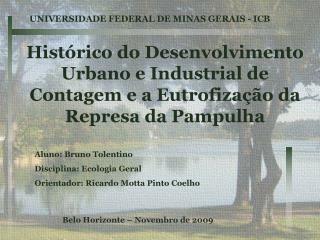 Aluno: Bruno Tolentino Disciplina: Ecologia Geral Orientador: Ricardo Motta Pinto Coelho