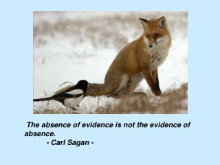 The absence of evidence is not the evidence of absence. 	- Carl Sagan -