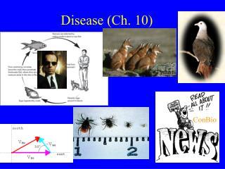 Disease (Ch. 10)