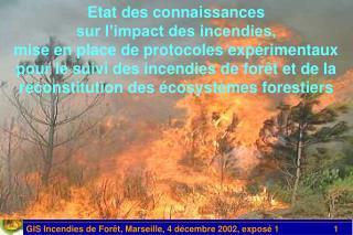 Etat des connaissances sur l impact des incendies, mise en place de protocoles exp rimentaux pour le suivi des incendies