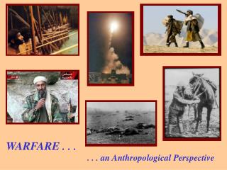 . . . an Anthropological Perspective WARFARE . . . WARFARE