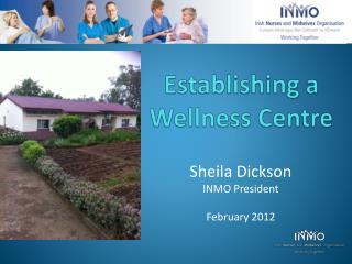 Establishing a  Wellness Centre