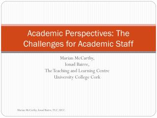 Academic Perspectives: The Challenges for Academic Staff
