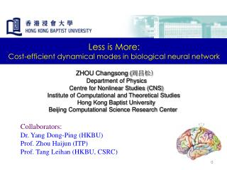 ZHOU Changsong ( 周昌松) Department of Physics           Centre for Nonlinear Studies (CNS)
