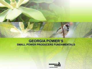GEORGIA POWER S  SMALL POWER PRODUCERS FUNDAMENTALS