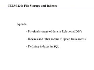 IELM 230: File Storage and Indexes