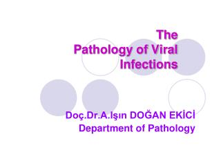 The Pathology of Viral Infections
