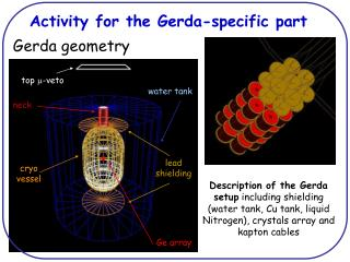 Activity for the Gerda-specific part