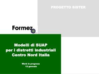 Modelli di SUAP per i distretti industriali Centro Nord Italia  Work in progress  12 gennaio