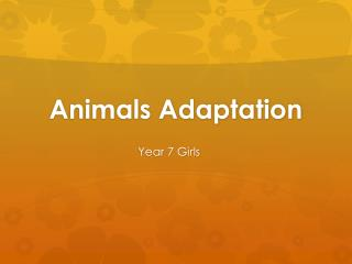 Animals Adaptation