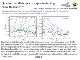 Quantum oscillations in a superconducting bismuth nanowire