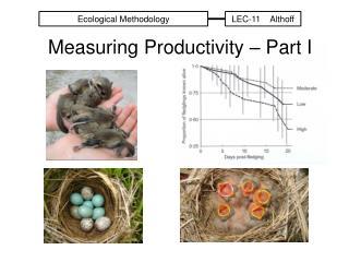 Measuring Productivity – Part I
