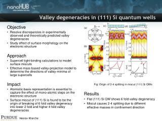Valley degeneracies in (111) Si quantum wells