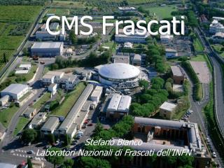 CMS Frascati