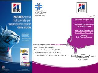 Sede Hotel Holiday Inn- Corso Francia Piazza Massaua 21 10142, Torino