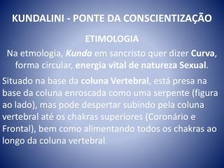 KUNDALINI - PONTE DA CONSCIENTIZAÇÃO
