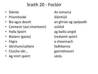 Sraith 20 -  Foclóir