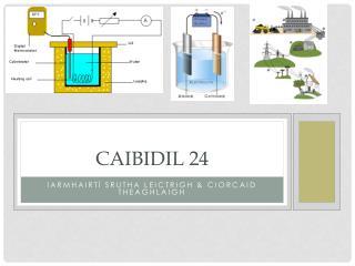 Caibidil 24