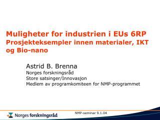 Muligheter for industrien i EUs 6RP Prosjekteksempler innen materialer, IKT og Bio-nano