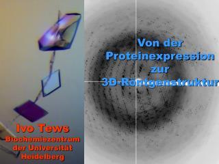 Von der Proteinexpressi on zur  3D-Röntgenstruktur