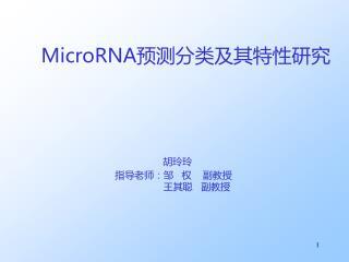 MicroRNA 预测 分类及其特性研究 胡玲玲 指导老师:邹 权    副教授 王其聪   副教授