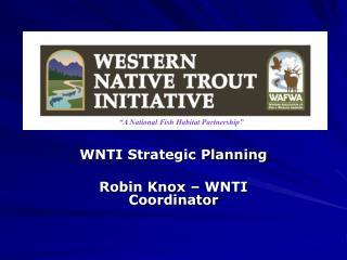WNTI Strategic Planning Robin Knox – WNTI Coordinator