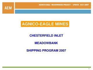 AGNICO-EAGLE MINES