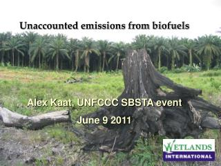 Unaccounted emissions from biofuels  Alex Kaat, UNFCCC SBSTA event June 9 2011