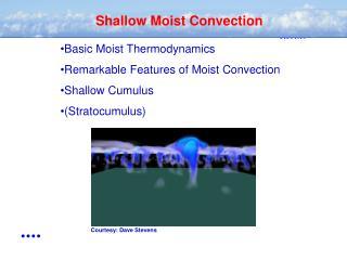 Shallow Moist Convection