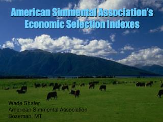 American Simmental Association's Economic Selection Indexes