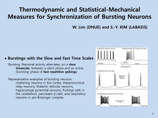 Thermodynamic and Statistical-Mechanical Measures for Synchronization of Bursting Neurons