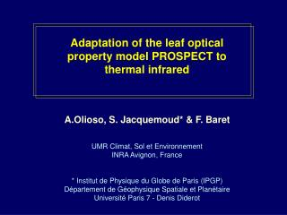 Adaptation of the leaf optical property model PROSPECT to thermal infrared