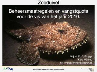 Zeeduivel - Beheersmaatregelen en vangstquota voor de vis van het jaar 2010.