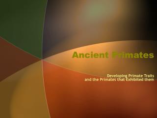 Ancient Primates