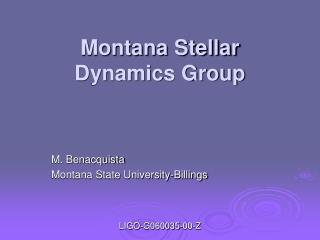 Montana Stellar Dynamics Group