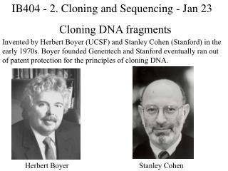 Cloning DNA fragments