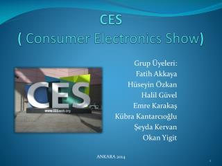 CES ( Consumer Electronics Show )