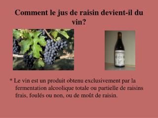Comment le jus de raisin devient-il du vin?