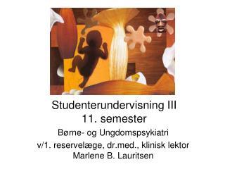 Studenterundervisning III 11. semester