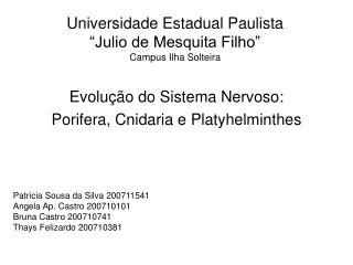 "Universidade Estadual Paulista ""Julio de Mesquita Filho"" Campus Ilha Solteira"