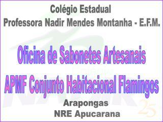 Arapongas  NRE Apucarana