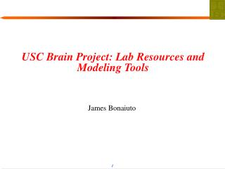 USC Brain Project: Lab Resources and Modeling Tools