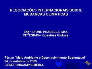 NEGOCIAÇÕES INTERNACIONAIS SOBRE MUDANÇAS CLIMÁTICAS