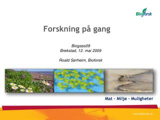 Forskning p  gang