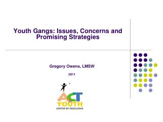 Youth Gangs: Issues, Concerns and Promising Strategies
