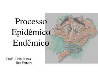 Processo Epidêmico Endêmico