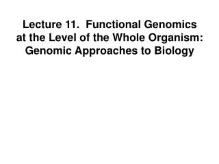 Lecture 11.  Functional Genomics at the Level of the Whole Organism: Genomic Approaches to Biology