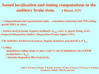 Sound localization and timing computations in the auditory brain stem.       J Rinzel, NYU