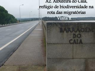 A2. Albufeira do Caia, refúgio de biodiversidade na rota das migratórias Visita à …